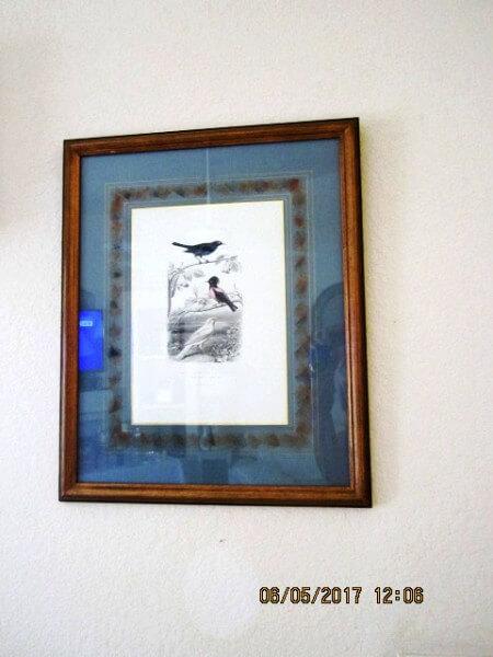 birdprint